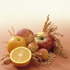 Papilla de frutas